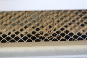 carbon monoxide in office building